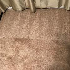Carpet cleaning gallery 017
